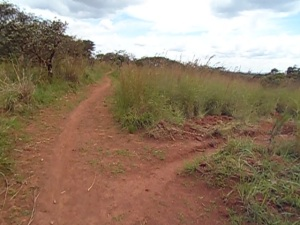 Roads in rural areas of Mahagi Territory