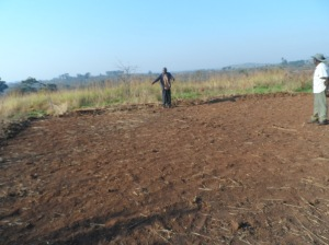 Clearing land for the clinic