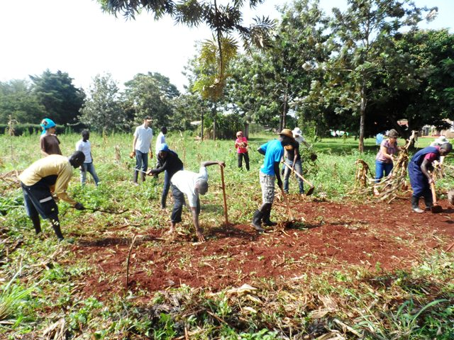 Practical experience during the School of Sustainable Agriculture