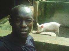 Innocent during Animal husbandry